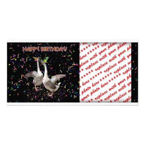 Gansos del feliz cumpleaños tarjetas fotográficas personalizadas