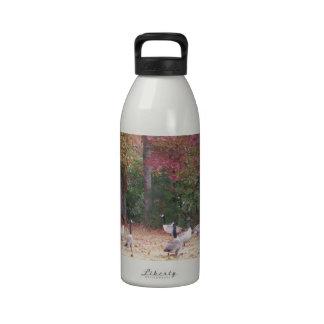 Gansos del otoño con rojo y hojas anaranjadas de l botellas de beber
