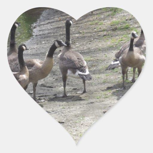 Gansos Pegatina En Forma De Corazón