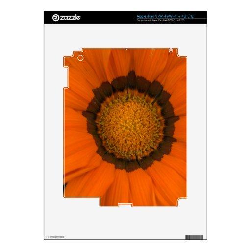 ganzia del escondite iPad 3 pegatinas skins