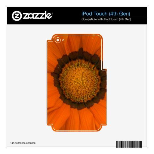 ganzia del escondite iPod touch 4G calcomanía