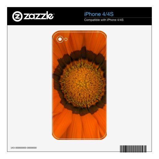 ganzia del escondite iPhone 4S calcomanías