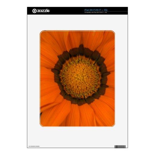 ganzia del escondite skins para iPad