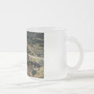 Gap of Dunloe 10 Oz Frosted Glass Coffee Mug