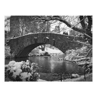 Gapstow Bridge Photo Print