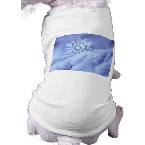 garcya.us_wallpaper071 ropa de perro