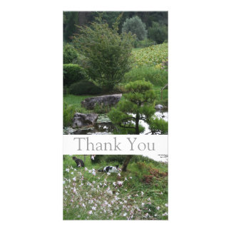 Garden 3 with Cats Thank You Photo Cards 1