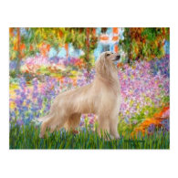 Garden - Afghan Hound (cream stand) Postcard