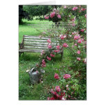 Garden Bench and Roses Card