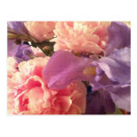 Garden Bouquet Postcard