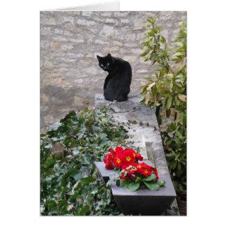 Garden Cat Card