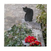 Garden Cat Ceramic Tile