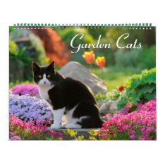 Garden Cats 2017 Size Large Calendar at Zazzle
