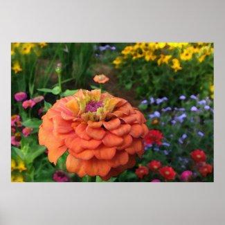 Garden Colors print