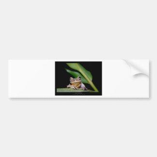 Garden critters - Frog 005 Bumper Sticker