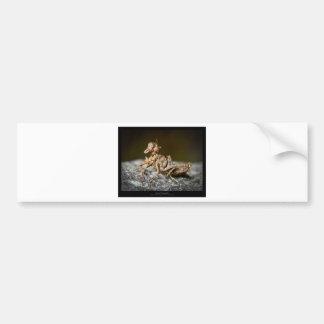 Garden critters - Insect 003 Bumper Sticker