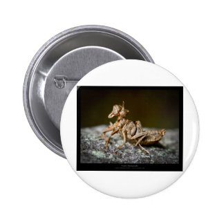 Garden critters - Insect 003 Pinback Button