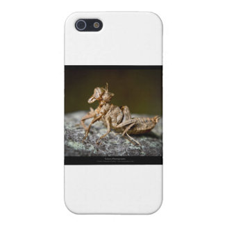 Garden critters - Insect 003 Cover For iPhone SE/5/5s