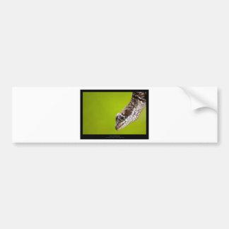 Garden critters - Lizard 002 Bumper Sticker