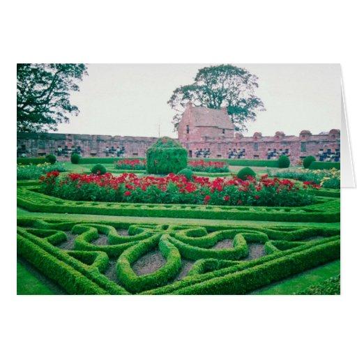 Garden, Edzell Castle flowers Greeting Card