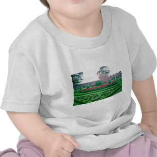 Garden, Edzell Castle flowers T-shirt