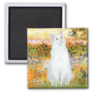 Garden Fiorito - White cat Magnet