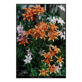 Garden Flowers #1 Poster