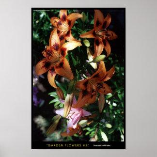 Garden Flowers #3 Posters