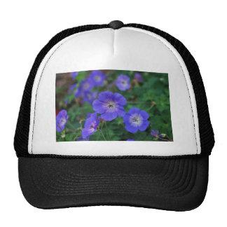 Garden Flowers Mesh Hats