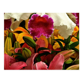 GARDEN FLOWERS IN SPRING BLOOM POSTCARD
