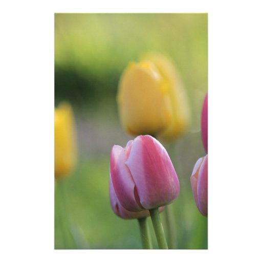 garden flowers stationery paper