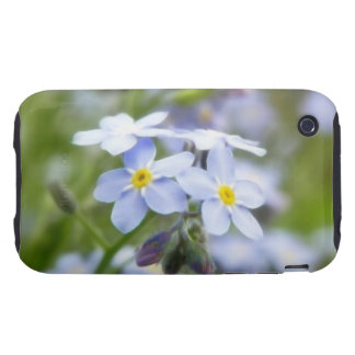 Garden Forget Me Nots iPhone 3 Tough Cover
