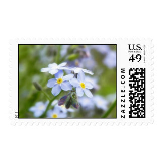 Garden Forget Me Nots Postage