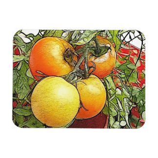 Garden Fresh Heirloom Tomatoes Magnet