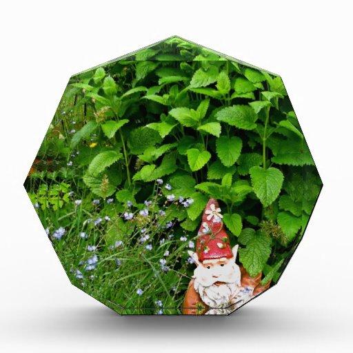 Garden Gnome Acrylic Award