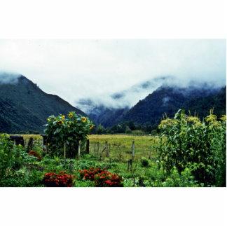 Garden, Golden Bay Area, South Island Photo Cutouts