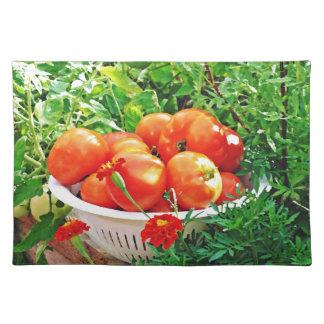 Garden Goodies Placemat