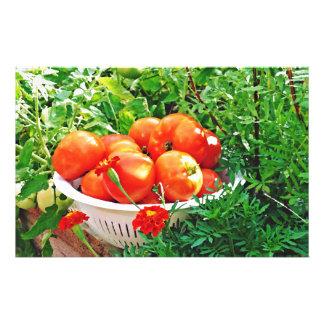 Garden Goodies Stationery