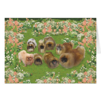 Garden Group Greeting Cards