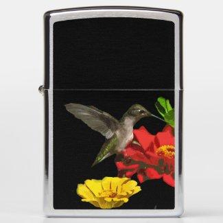 Garden Hummingbird on Red Yellow Zinnia Flowers