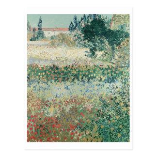 Garden in Bloom, Arles, July 1888 Postcards