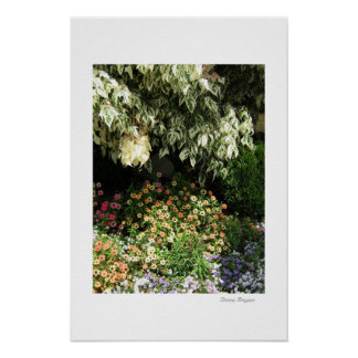 Garden in The Shade - poster or print