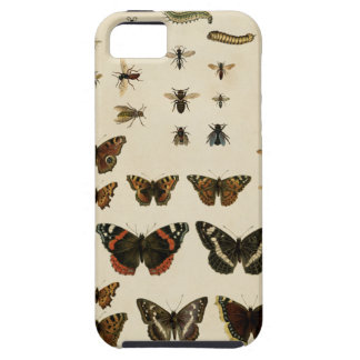 Garden Insects by Vision Studio iPhone 5 Case