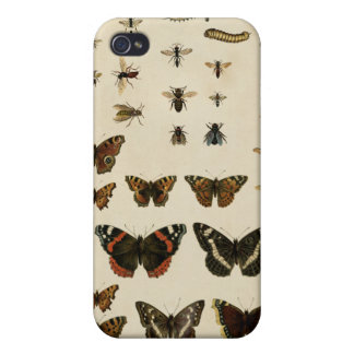 Garden Insects by Vision Studio iPhone 4/4S Cases