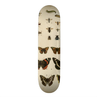 Garden Insects by Vision Studio Skateboard