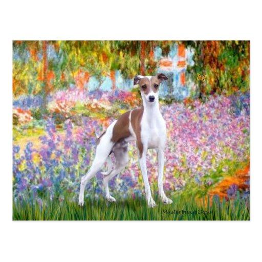 Garden - Italian Greyhound 7 Postcard