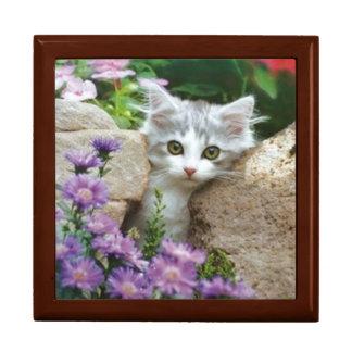Garden Kitten Gift Box