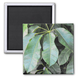 Garden Leaves 2 Inch Square Magnet