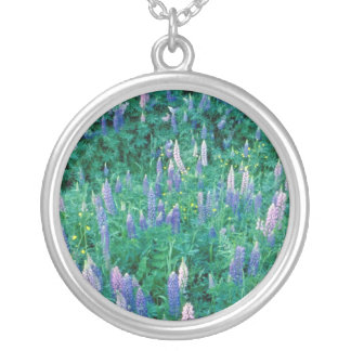 Garden lupines and buttercups, Quebec, Cana Necklaces