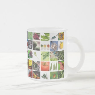Garden 10 Oz Frosted Glass Coffee Mug